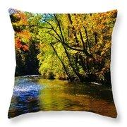 The Rifle River At Highbanks Base Throw Pillow