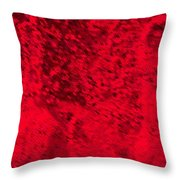 The Right Side Throw Pillow