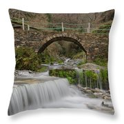 The River And The Village Throw Pillow