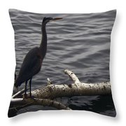 The River Master Throw Pillow
