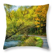 The River Road Curve Throw Pillow