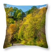 The River Road Throw Pillow