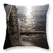 The River's Edge Throw Pillow