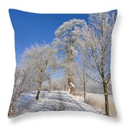 The Road Throw Pillow by Aged Pixel