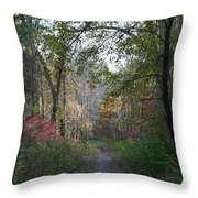 The Road Ahead No.2 Throw Pillow