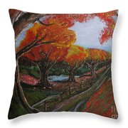 The Road Home Throw Pillow by Erik Coryell