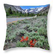 The Road Into Lundy Canyon Throw Pillow