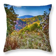 The Road To Cataloochee On A Frosty Fall Morning Throw Pillow