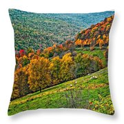 The Road To Glady Wv Throw Pillow