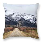 The Road To Soldier Creek Throw Pillow