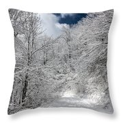 The Road To Winter Wonderland Throw Pillow
