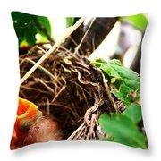 The Robins Nest Throw Pillow