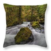 The Rock At Panther Creek Throw Pillow