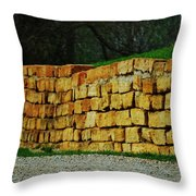 The Rock Wall Throw Pillow