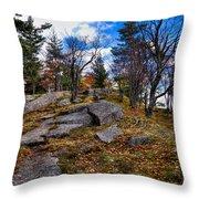 The Rocks Above Eagle Bay IIi Throw Pillow