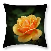 The Rose 1 Throw Pillow
