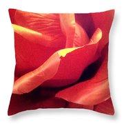 The Rose 5 Throw Pillow