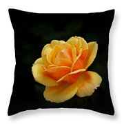 The Rose Throw Pillow