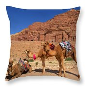 The Royal Tombs Throw Pillow