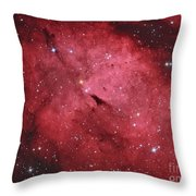 The Sadr Region In The Constellation Throw Pillow