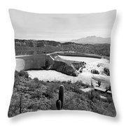The Salt River In Arizona Throw Pillow