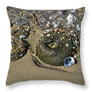 The Sand Box Throw Pillow