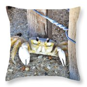 The Sandcrab - Seeking Shelter Throw Pillow