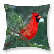 The Santa Bird Throw Pillow