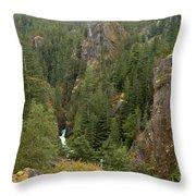 The Scenic Cheakamus River Gorge Throw Pillow