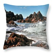 The Sea Abounds Throw Pillow