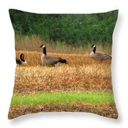 The Search In Life  Throw Pillow