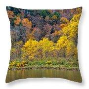 The Season Of Yellow Leaves Throw Pillow