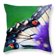 The Secluded Butterfly Throw Pillow by Kim Fearheiley