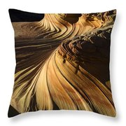 The Second Wave Arizona 4 Throw Pillow