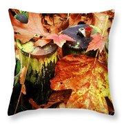 The Secret Of Fall Throw Pillow