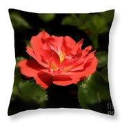 The Secret Rose Throw Pillow