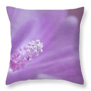 The Secret Unveiled Throw Pillow by Maria Ismanah Schulze-Vorberg