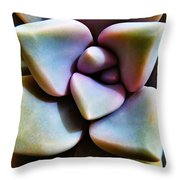 The Sedum Succulent Throw Pillow
