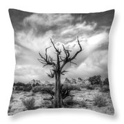The Sentinal South Coyote Buttes Throw Pillow