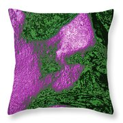 The Sentinel 13 Throw Pillow