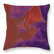 The Sentinel 17 Throw Pillow