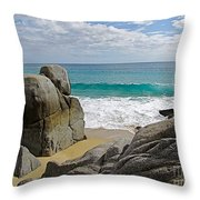 The Sentinel -- Baja California Sur Throw Pillow