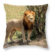 King Of The Savannah Throw Pillow