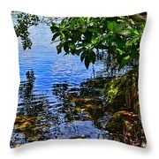 The Serenity Of Mind Throw Pillow