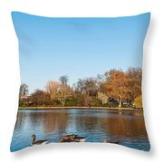 The Serpentine Ducks Throw Pillow by Luis Alvarenga