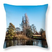 The Serpentine Seagulls Throw Pillow by Luis Alvarenga