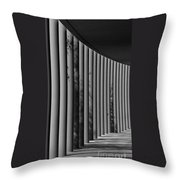 The Shadows And Pillars  Black And White Throw Pillow