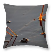 The Shine Of Your Eyes Throw Pillow