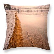 The Shore In Winter Throw Pillow