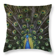 The Show Off Throw Pillow